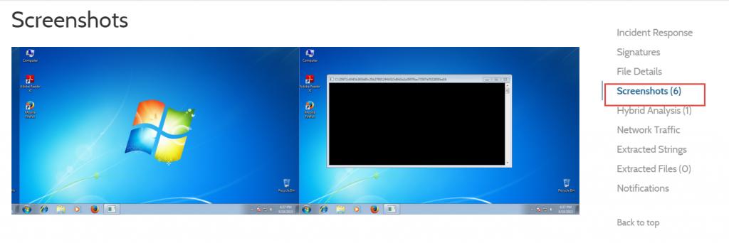 Malware Analysis Screenshot